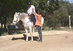 Equitherapy horse handicap